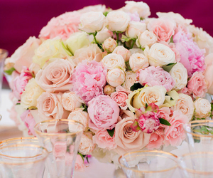 beauty, peonies, and white image