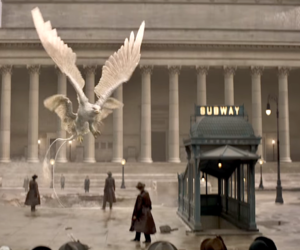 harry potter, j.k rowling, and fantastic beasts image