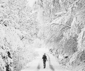 christmas, snow, and holiday image