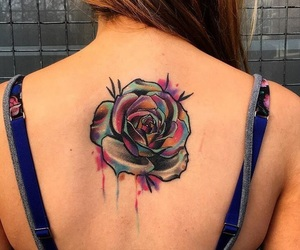 beautiful, color, and rose image
