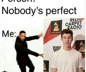 shawn mendes and perfect image