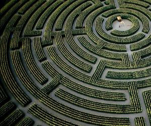 labyrinth, maze, and green image