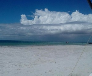 beach, blue, and cloudy image