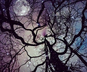 moon, galaxy, and tree image