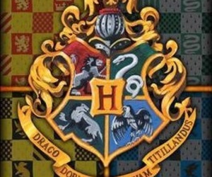 gryffindor, harry potter, and hogwarts image