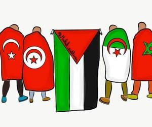 palestine, maroc, and turquie image