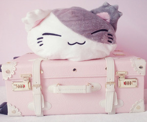 pink, kawaii, and cat image