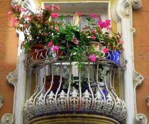 beautiful, windows, and flores image