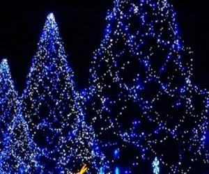 christmas, lindo, and noel image