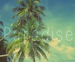 paradise, summer, and beach image