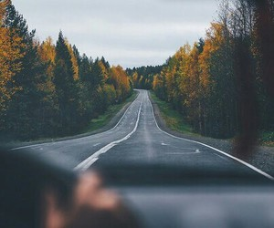 autumn, road, and travel image