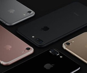 iphone and apple image