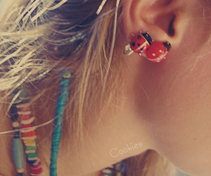 colors, earrings, and ladybird image