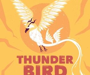 thunder bird image
