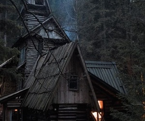 forest, house, and witch image