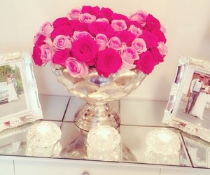 beauty, picture, and pink roses image
