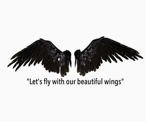wings and let's fly image