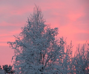 winter, pink, and sky image