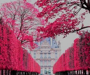 art, paris, and photography image
