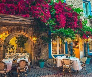 restaurant and flowers image