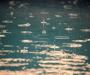 rain, water, and photography image
