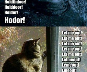 hodor, cat, and game of thrones image