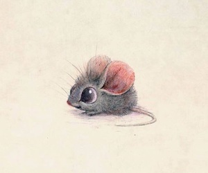 mouse image