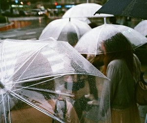 rain, umbrella, and vintage image