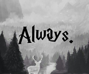 always, harrypotter, and deer image
