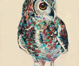 owl, drawing, and colors image