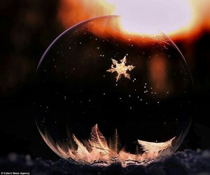 amazing, awesome, and bubble image