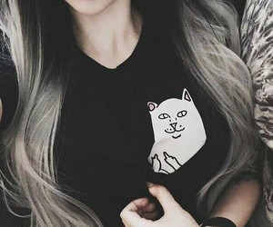 hair, black, and cat image