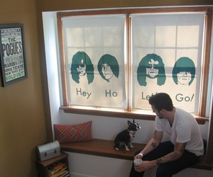 ramones, curtains, and dog image