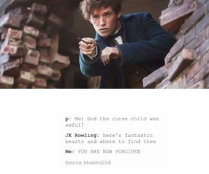 harry potter and j k rowling image