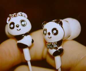 panda, cute, and headphones image