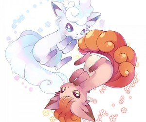 pokemon, vulpix, and alola image