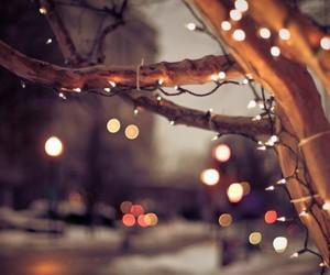 candycane, christmas, and holiday image
