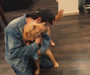 boy, dog, and animals image