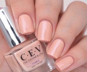 nail polish and french manicure image