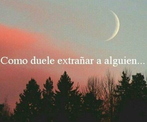 duele and extrañar image