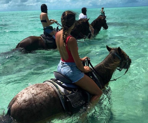 nice, sea, and horses image