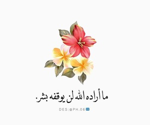 islam, اسﻻم, and quotes image