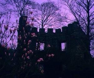 purple, castle, and flowers image