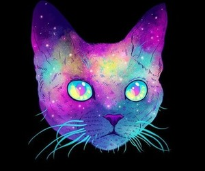 alternative, background, and cat image