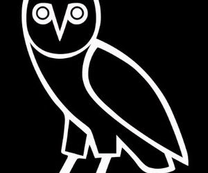 Drake, ovo, and owl image