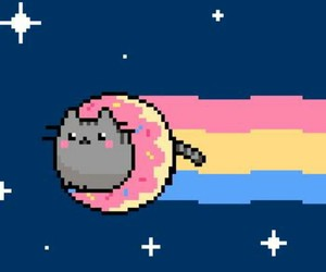 cat, nyan cat, and donuts image