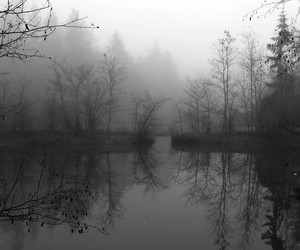 black and white, lake, and fog image