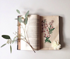 book, flowers, and indie image