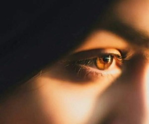brown eyes, eyebrow, and eyes image