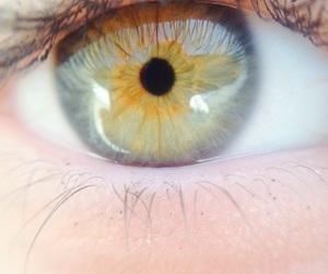 eye, green, and make image